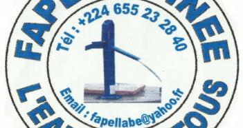 logo #STARTUP: FAPEL GUINÉE